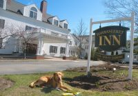 10 dog friendly places to stay in maine from york to northport Pet Friendly Cabins In Maine