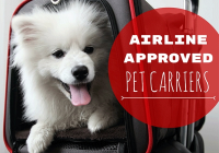 8 best airline approved pet carriers for in cabin flights Airlines That Allow Dogs In Cabin