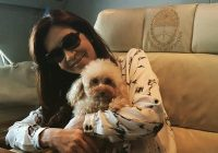 president of argentina announces state run airline will allow Airlines That Allow Dogs In Cabin